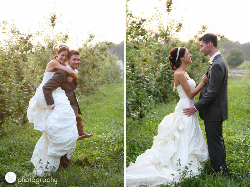 wedding photos apple orchard massachusetts