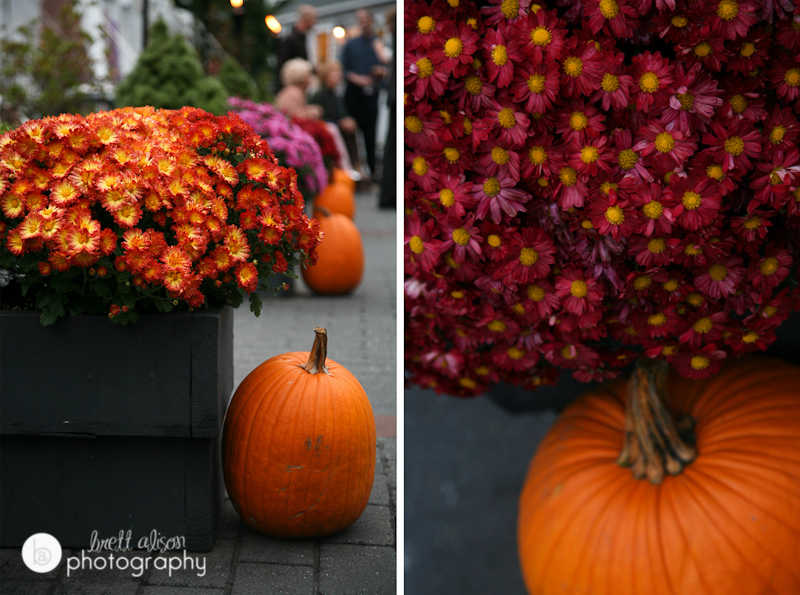 pumpkins and mums fall details at nh wedding