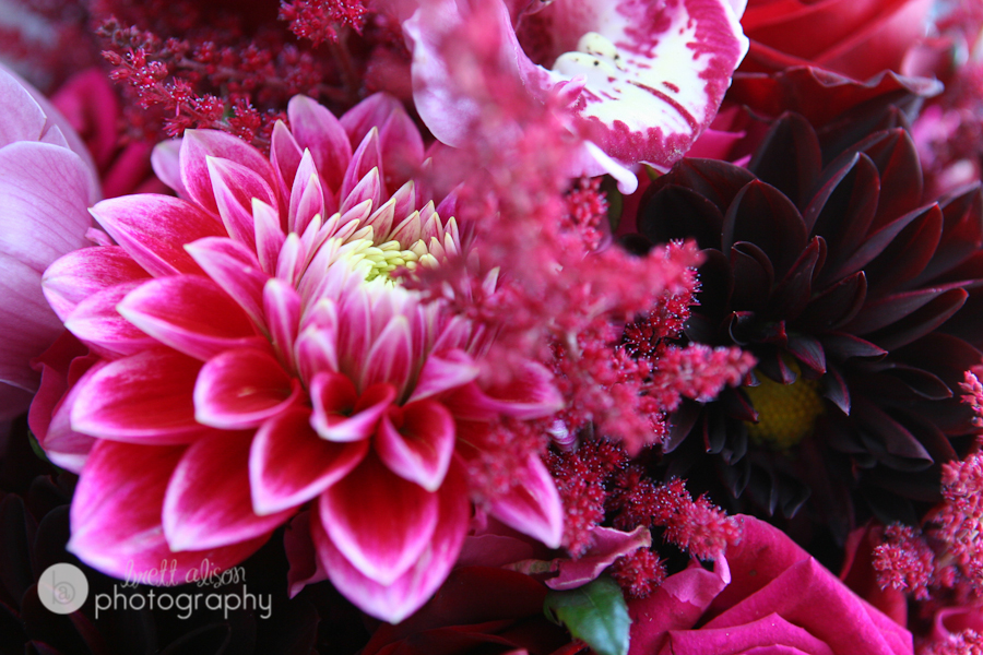 pink purple dahlia wedding bouquet