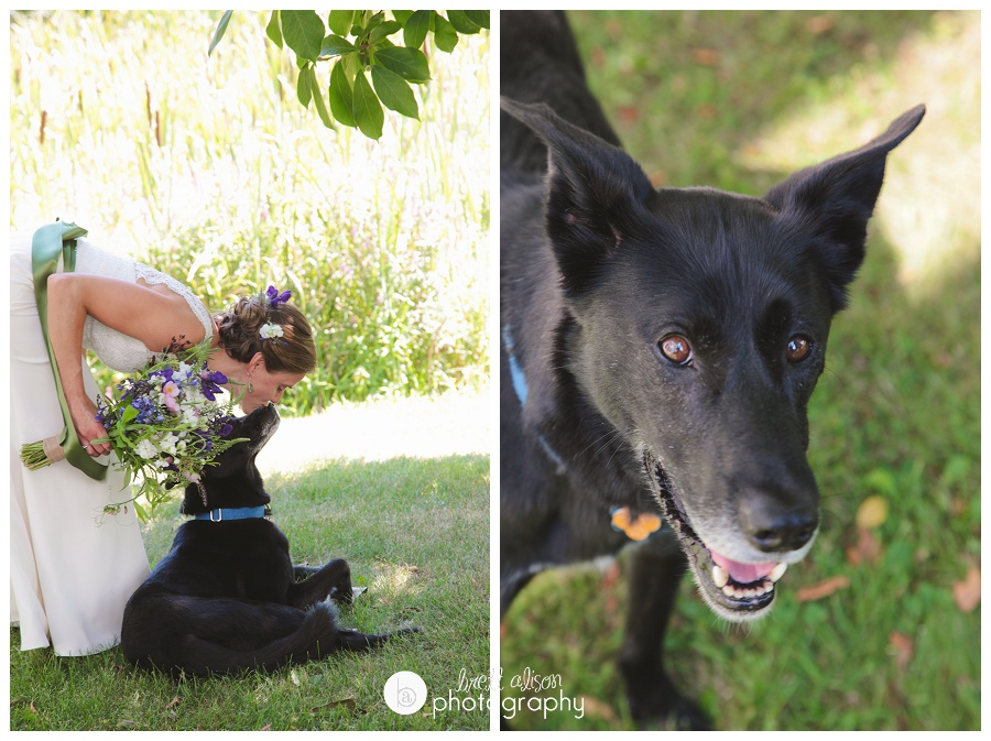 bride with dog wedding photos