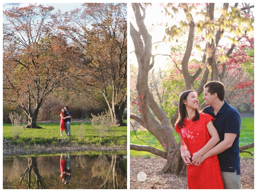 engagement photos arnold arboretum