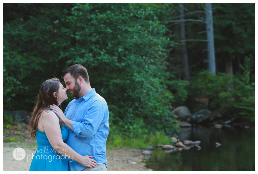 willard brook engagement session